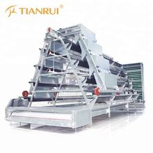 Egg layer Chicken Farm Machine for Laying Hen