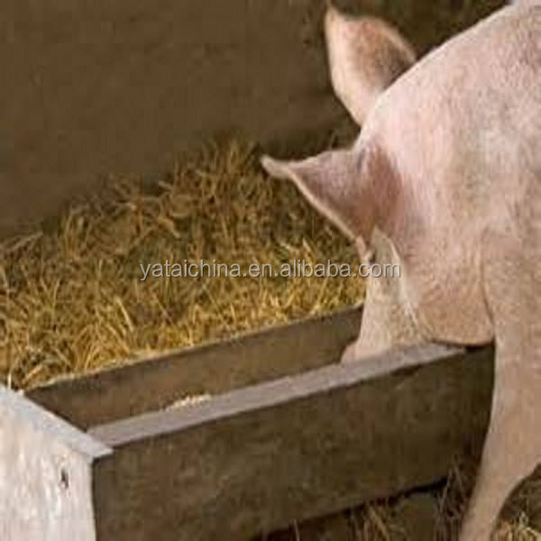 meat meal pig feed 50% protein animal food