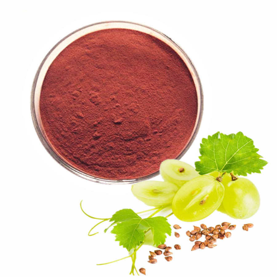 Grape seed Proanthocyanidins oil price capsule grape seed extract powder Proantho Cyanidins for skin whitening vitis vinifera