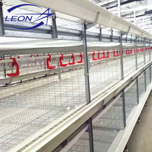 Leon series poultry duck cage system for meat duck