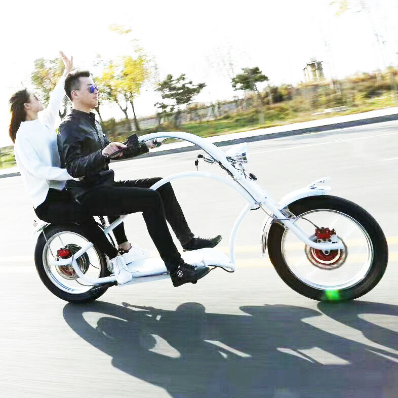 Adult Haley E-Bike 2000W Lithium Battery Electric Chopper E Bike Choper/Chooper Bicycle