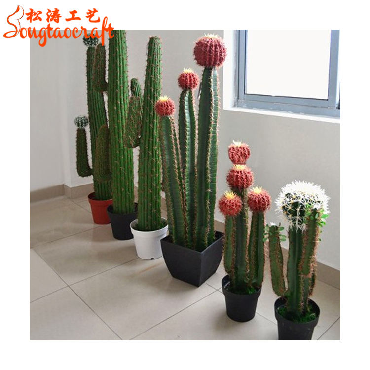 Artificial cactus plants tropical names of cactus plants and cafe cactus plant names