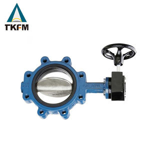 Companies looking for distributors ss 316 g & h full lug type seal ptfe flange type butterfly valve steel thick