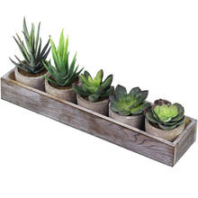 5 Mini Faux Succulent Aloe Potted plants   Arrangements Decorative Assorted Potted tropical Succulents Cactus artificial  plants
