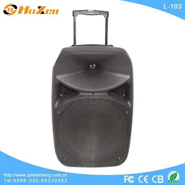 Supply all kinds of cd boombox speaker, trolley speaker, subwoofer speaker
