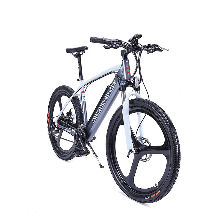 Paypal Electric Bike Electric-bike Lithium Ion Battery Ebike Pedal Assist