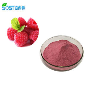 SOST Bulk Organic Freeze Dried Raspberry Juice Powder