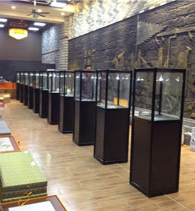 museum display/museum display cases/used museum display cases