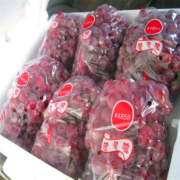 2018 new crop red 포도 in china sweet red globe grape