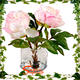 China factory Hot sale artificial flower real touch peony