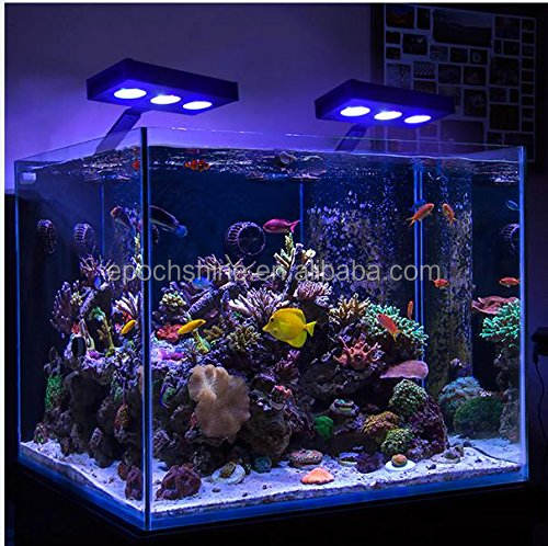 Dimmable programmables LED <span class=keywords><strong>lumière</strong></span> d'<span class=keywords><strong>aquarium</strong></span> LED lumières d'<span class=keywords><strong>aquarium</strong></span> gradateur avec la <span class=keywords><strong>lune</strong></span>