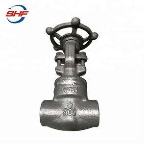 Forged Steel Welded Bonnet Bolted Bonnet Gate Valve