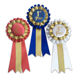 1st, 2nd, 3rd Place Rosette Award Ribbons