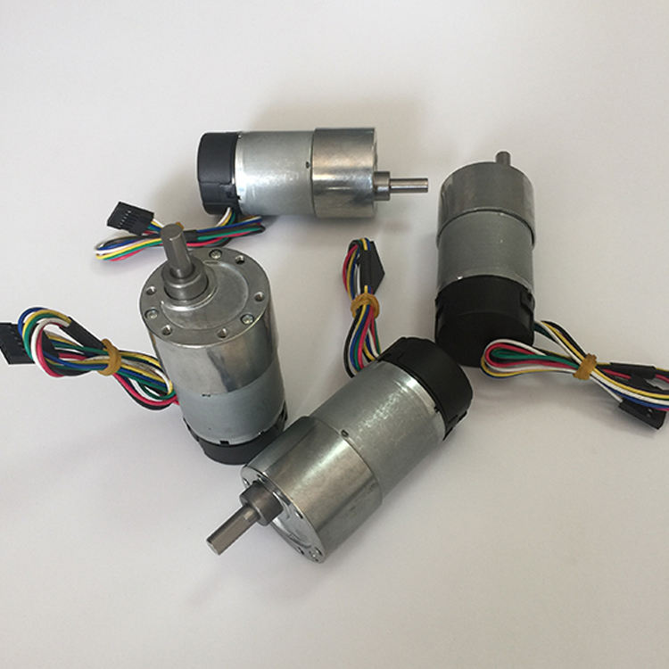 China supply 6VDC 24VDC Low Rpm High Torque Dc Geared Motor for sale