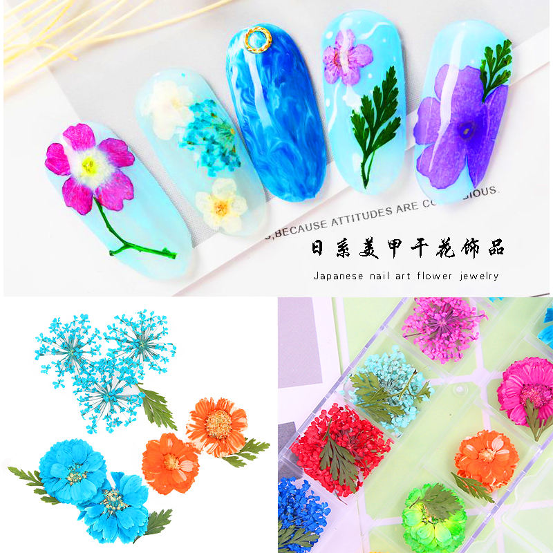 Natural Plant Dry Flower Nail Small Adorn Article 12 color/boxe of Dried Flowers Wholesale Nails Decorations
