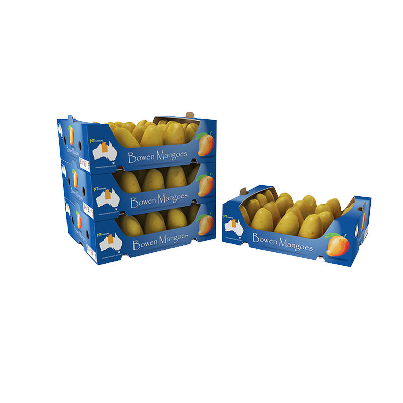 Wholesale fruits lemon mangoes tomato corrugated packaging box