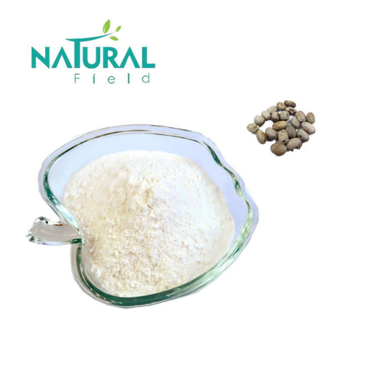 Ture Manufacturer since 2005 High Active ingredients food supplement mucuna pruriens extract 99% l-dopa