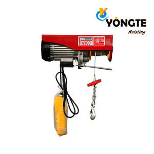 Electric hoist PA300 300KG electric wire rope 12M 20M hoist