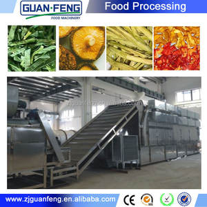 Vegetables and fruits dehydrator spring onion drying line