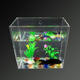 PMMA acrylic wall hanging aquarium with rectangle structure