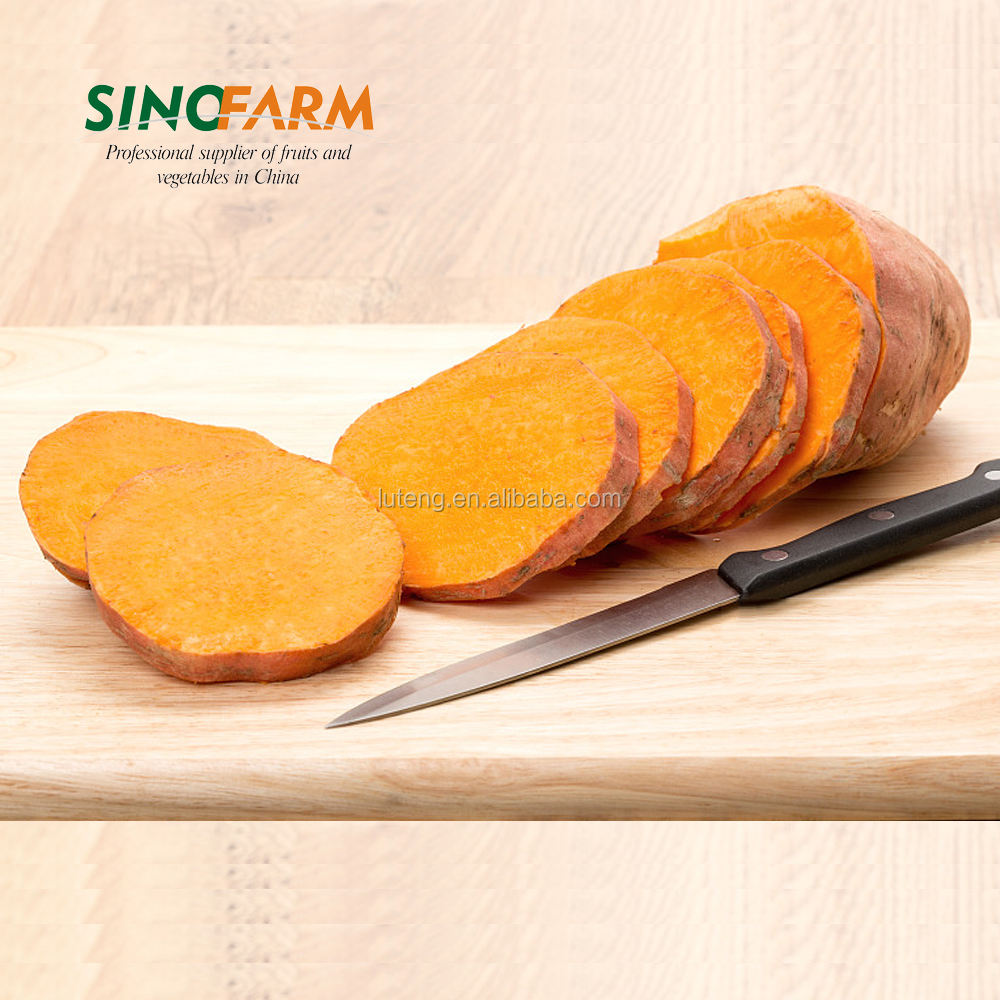 Nouvelle patate douce en <span class=keywords><strong>chine</strong></span>