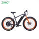 2019 New 750w Bafang Motor Big Tire Electric Fat Bike for men