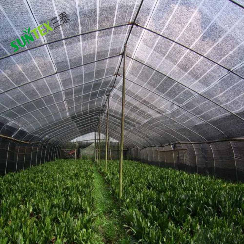 Supply various customized green shed net 50% shade rate sun shade net for greenhouse /plastic net manufacturer