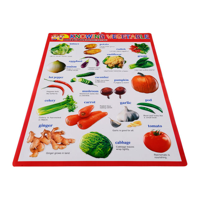 Children Educational charts pictures 3D embossed wall chart