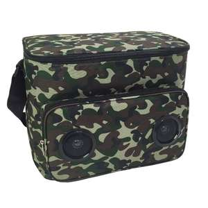 24 Can picnic custom soft cooler bag with speaker for picnic travel