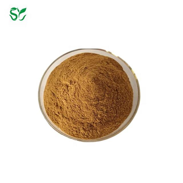 100% Natural Concentrated Powder Hoodia Gordonii Extract