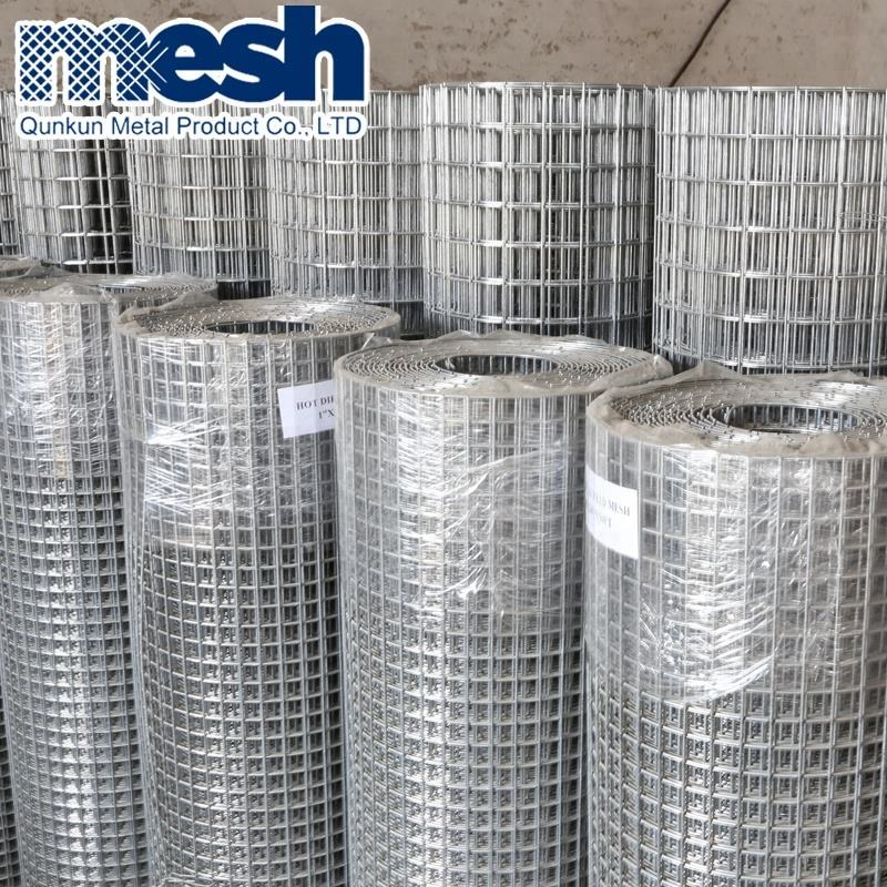 galvanized bird cage welded wire mesh roll for sale