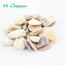 Best selling china supplier crushed shell for sale