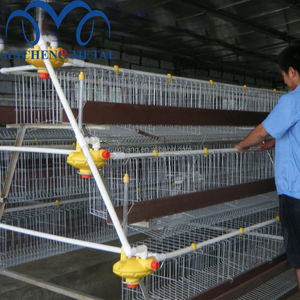 2018 Guangzhou Factory chicken broiler cages for kenya poultry farm/Kenya Broiler chicken cages