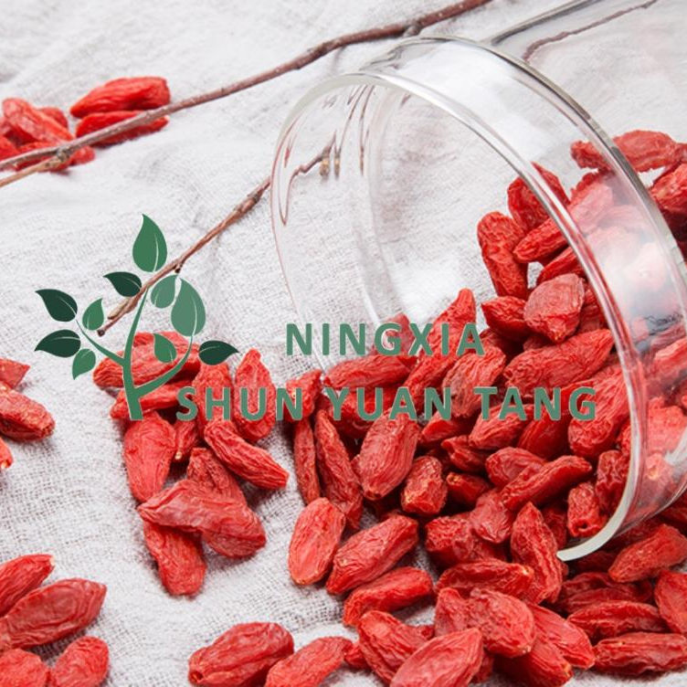2018 Fresh Organic Goji Berries Dried Fruit