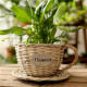 decorative garden handmade wicker basket flower pot