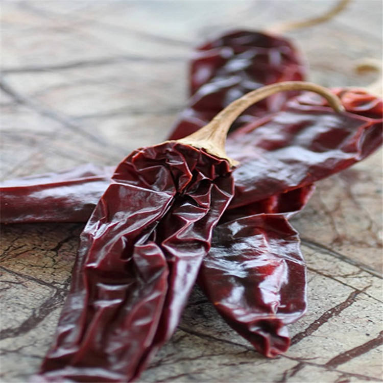 Natural dried red chili Dry red chillies with stem