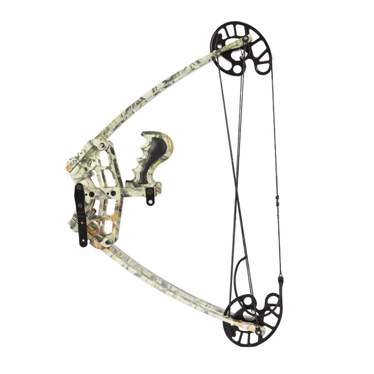 Custom hoyt bow compound bow Hunting Compound Bow