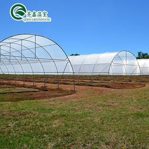 Cheap Single Span Galvanized Steel Truss Film Greenhouse