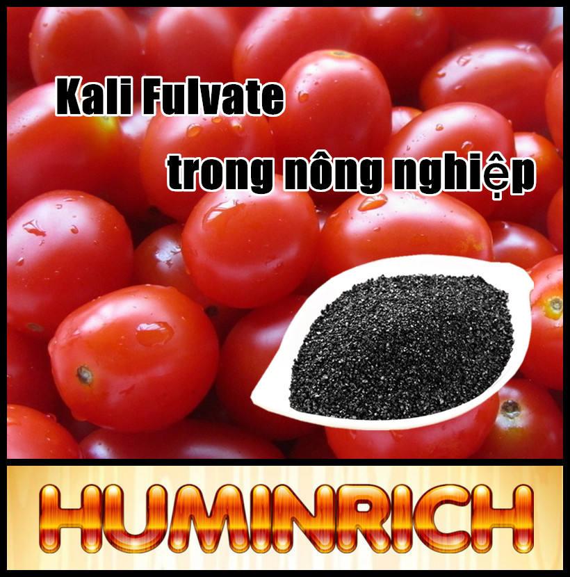 Huminrich siêu kali Humate vảy sáng bóng sản xuất phân bón vi sinh