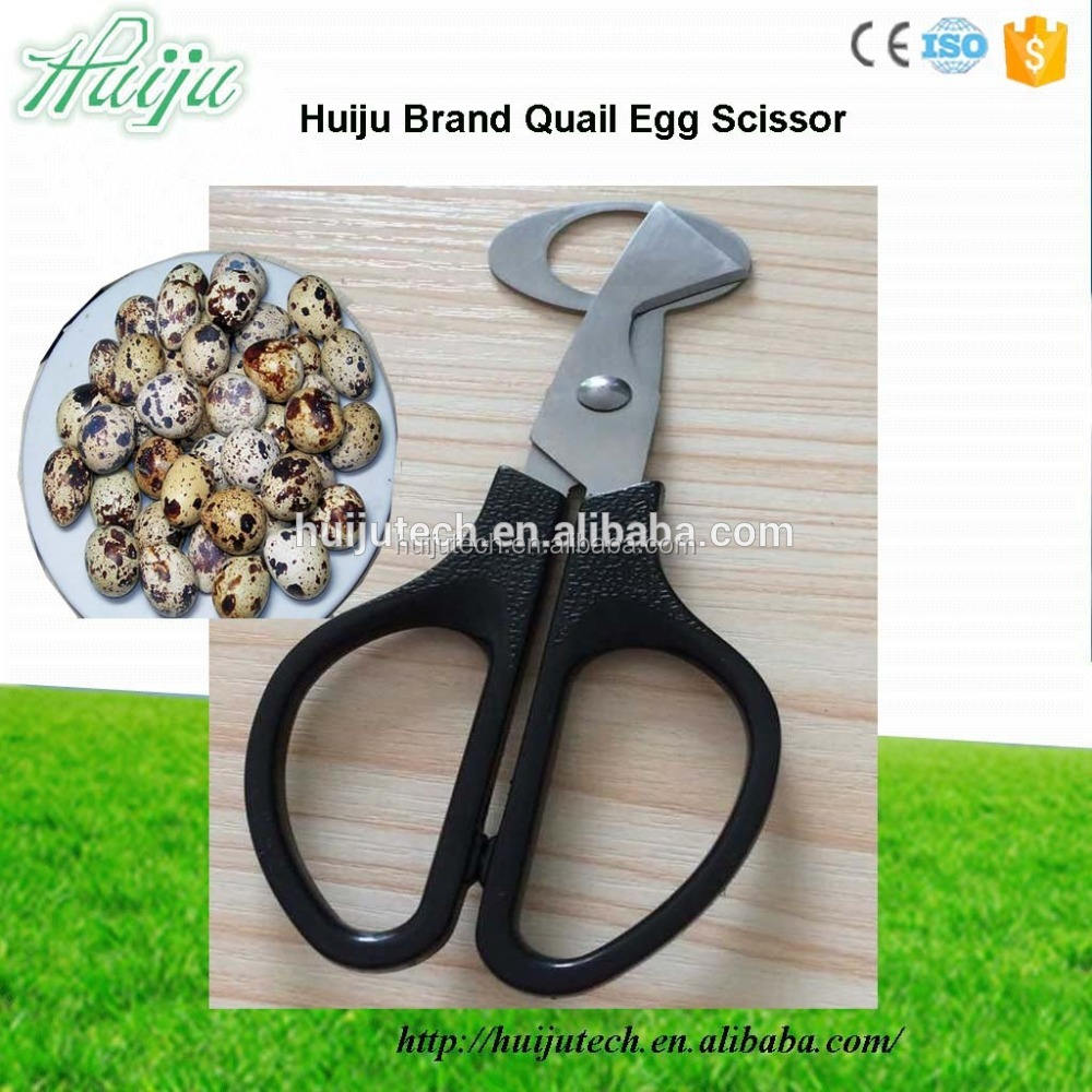big factory high quality quail egg mouth openers/quail egg scissors HJ-QES001
