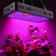 Greenhouse Indoor Garden Plant Light Veg and Bloom 600W 900W 1200W Full Spectrum LED Grow Light