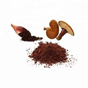 Natural and Pure Glossy Lingzhi Ganoderma Lucidum/Reishi Mushroom Plant Extract Powder 10% to 30% 50% Polysaccharides 20.1 30.1