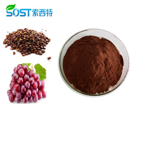 Xi an Sost Biotech Supply Fruit Extract Organic OPC Grape Seed Extract Powder
