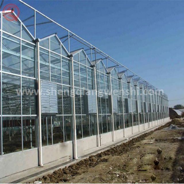 Vegetables Growing Greenhouse Farm Agriculture Farm Multi Span Polycarbonate Sheet Tunnel Greenhouse For Tomato