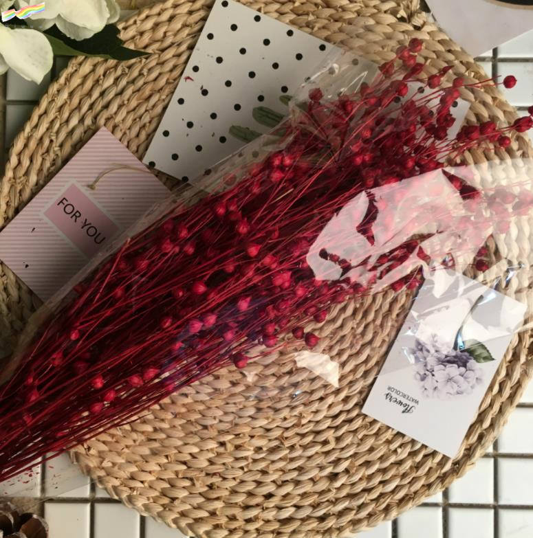 Wholesale colorfully flax bunch dried flowers and dried pods grasses beads dried flowers for decoration