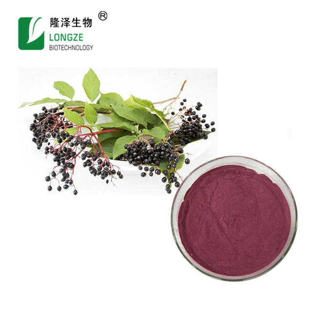 Antioxidant Elderberry Fruit Extract Powder Sambucus nigra Black Elderberry Fruit Powder