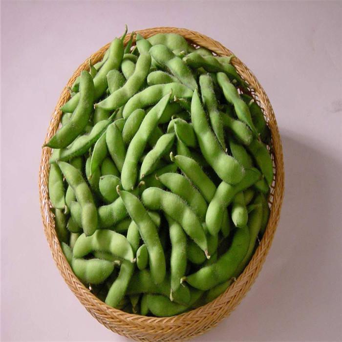 Саженцы овощей комбайн hs код F1 органические зеленые бобы cowpeasoybean семена