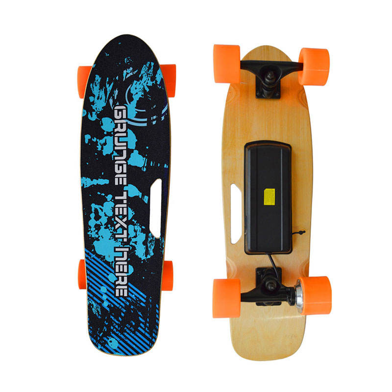 wholesale small fish plate boosted electric skate board remote control electric skateboard