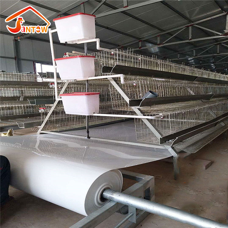 Types of Layer Chicken Cages For Zimbabwe Poultry Farms Chicken Layer Cage System Price /Chicken Cage for Sale in Philippines