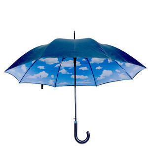 High quality transfer blue sky double canopy printing umbrella from China factory